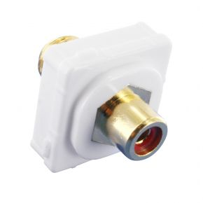 Digitek RCA Female Red to F Female Terminal Connector For Custom Wall Plate Gold Plated 05BC1R