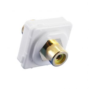 Digitek RCA Female Yellow to F Female Terminal Connector For Custom Wall Plate Gold Plated 05BC1Y